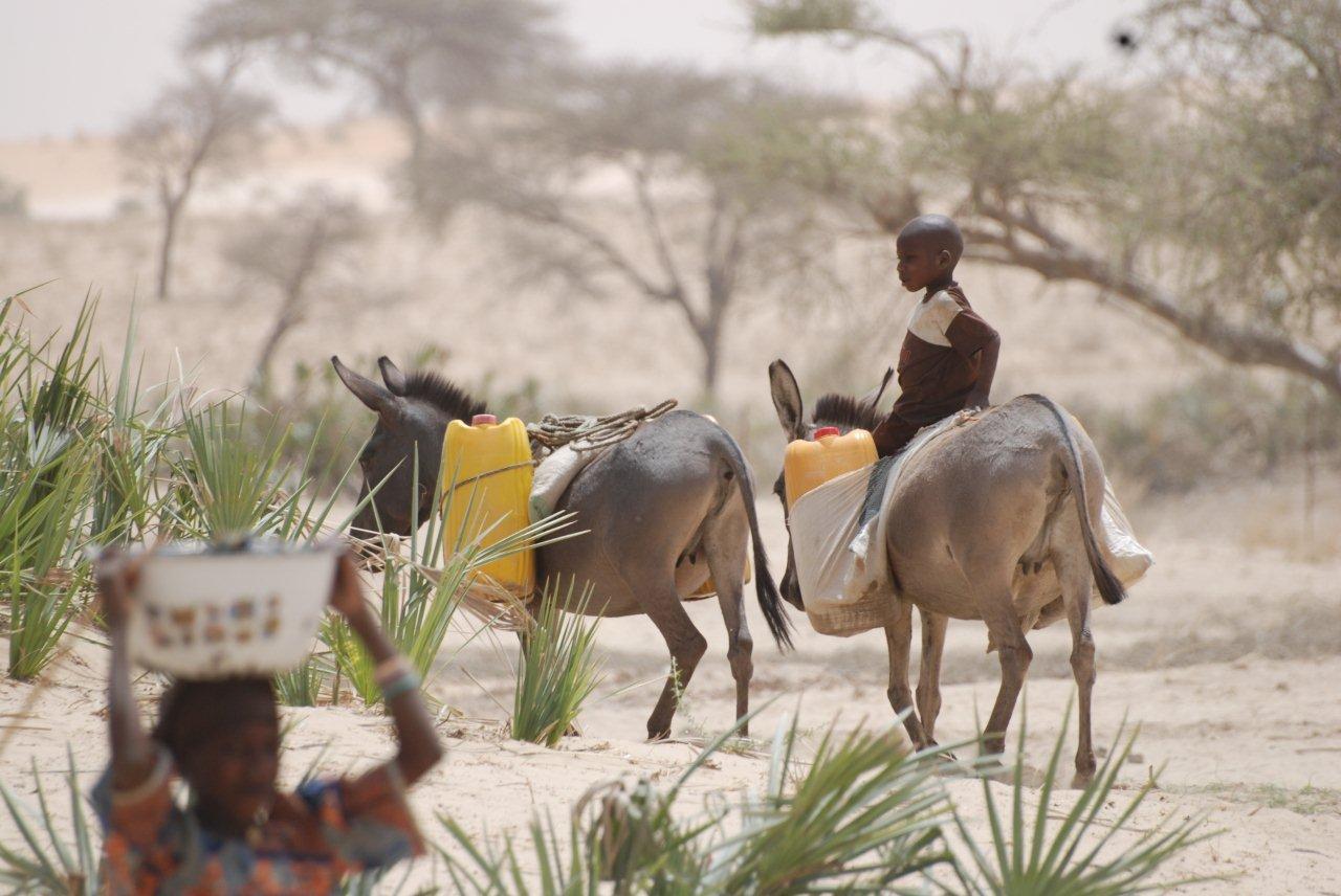 Atténuation des changements climatiques : financement en Afrique de l'Ouest