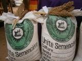 Annuaire National 2015 de disponibilité en semences de qualité au Niger