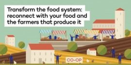 Why we need local food systems and how to get them