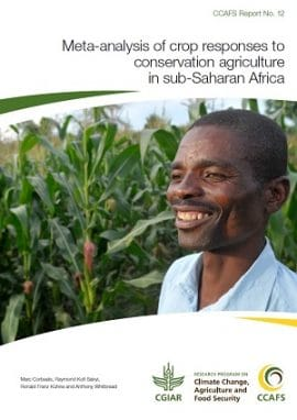 Does conservation agriculture work for smallholder farmers in Africa?