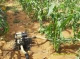 Stratégie de la Petite Irrigation au Niger
