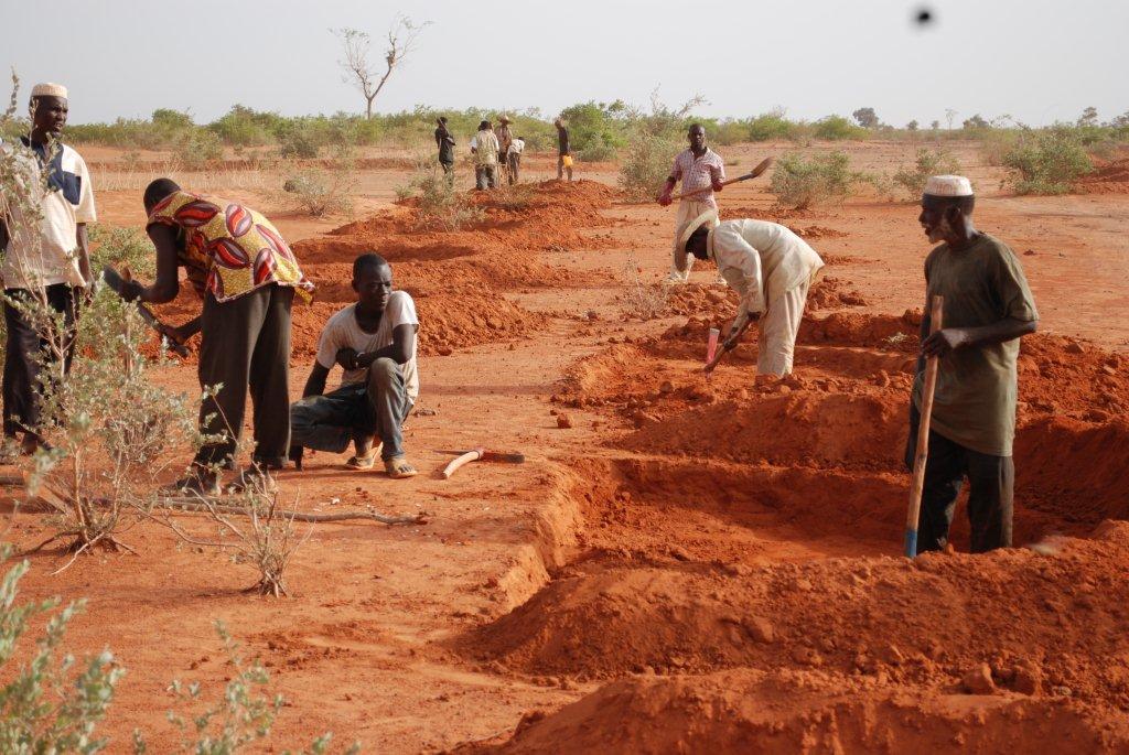Agriculture intelligente face au climat, une solution gagnante pour relever le défi de l'insécurité alimentaire et la lutte contre la désertification