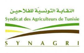 """Blog FARM : """"La révolution tunisienne n'a pas profité à l'agriculture"""""""