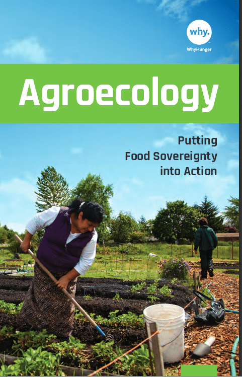 Agroecology : putting food sovereignty into action