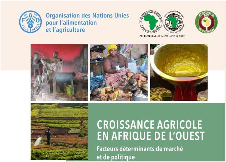 Croissance agricole en Afrique de l'Ouest : Facteurs déterminants de marché  et de politique