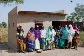 Article : Quelques dimensions politiques de la question de l'agriculture ouest-africaine