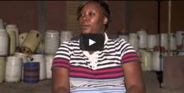 Paroles terriennes : Clips vidéos sur le karité