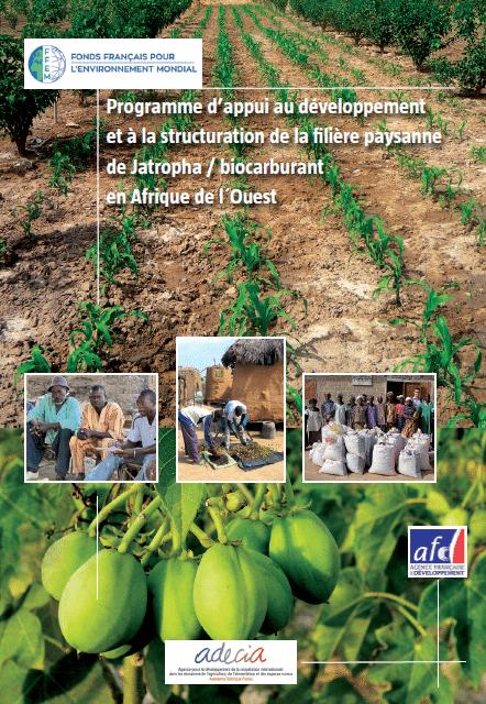 Jatropha : politiques publiques, dynamique de production au Burkina, Etude sur le decorticage et la valorisation des coques de Jatropha en Afrique de l'Ouest
