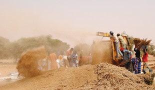 Synthèse : Changement climatique, environnement et migration dans le Sahel