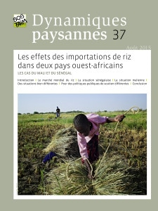 Dynamiques paysannes 37 - Les effets des importations de riz dans deux pays ouest-africains