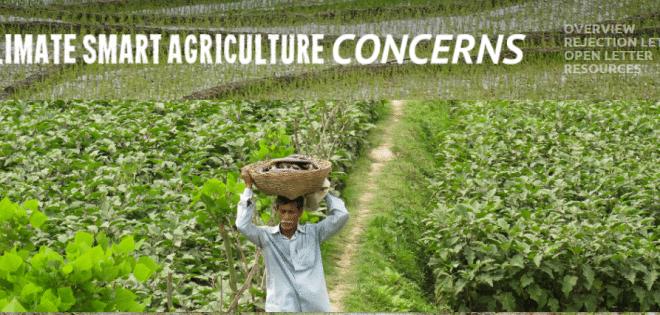 Plus de 355 organisations de la société civile contre « l'agriculture intelligente face au climat »