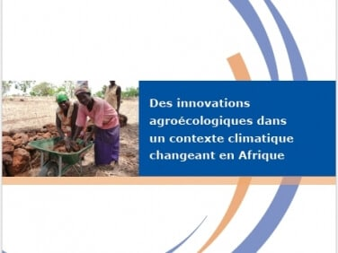 Étude : Des innovations agroécologiques dans un contexte climatique changeant en Afrique