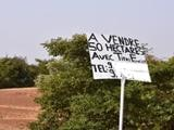 La « vente » des terres pastorales à Bitinkodji (Niger)