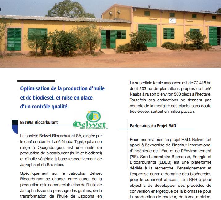 ADECIA : Résultats des travaux de R&D sur le Jatropha en Afrique de l'Ouest
