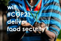 Place de l'agriculture dans les contributions nationales suite à la COP21