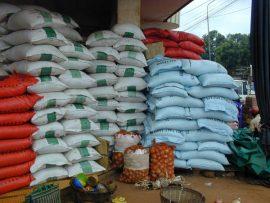 Le Mali passe 2ème producteur de riz en Afrique de l'ouest