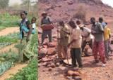 25 ans de réhabilitation et de conservation des sols au Sahel