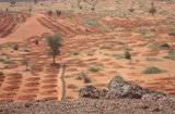 Sécuriser les terres restaurées : comment faire en pratique ?