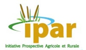 Entretiens sur les politiques d'autosuffisance en riz en Afrique de l'Ouest