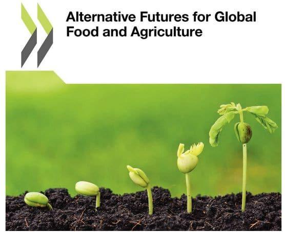 Rapport OCDE : plusieurs avenirs possibles pour l'agriculture et l'alimentation dans le monde