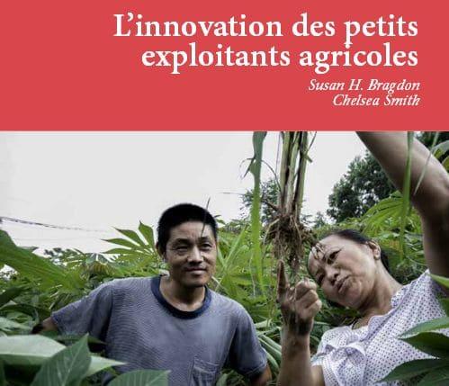 Rapport : L'innovation des petits exploitants agricoles