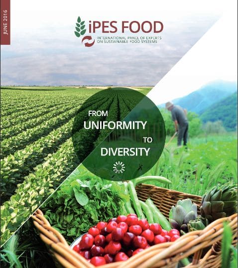 A paradigm shift from industrial agriculture  to diversified agroecological systems