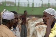 Il est nécessaire d'investir dans l'innovation agricole pour lutter contre la faim et la pauvreté