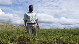 European Parliament speaks out against agricultural colonialism in Africa