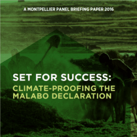 Set for success: Climate-proofing the Malabo declaration