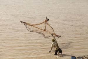 En Afrique, les petits poissons jouent un rôle essentiel dans l'alimentation des populations des zones arides, selon une étude de la FAO