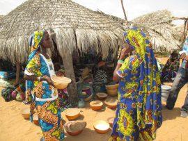 Vidéo Magazine Wari - Reportage sur la formulation des Programmes d'Investissement Agricole de seconde génération en Afrique de l'Ouest