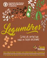 Légumineuses: des graines nutritives pour un avenir durable