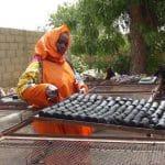 Mauritanie : Arte réalise un reportage sur le projet Typha