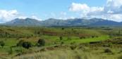 Agrimonde − Terra : les voies étroites de la sécurité alimentaire mondiale