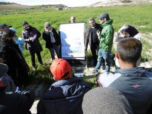 Agriculture de conservation en conditions méditerranéenne
