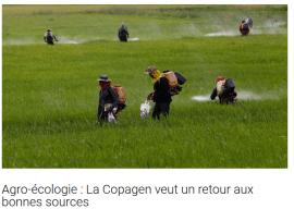 Agro-écologie : La Copagen veut un retour aux bonnes sources