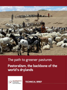 The path to greener pastures. Pastoralism