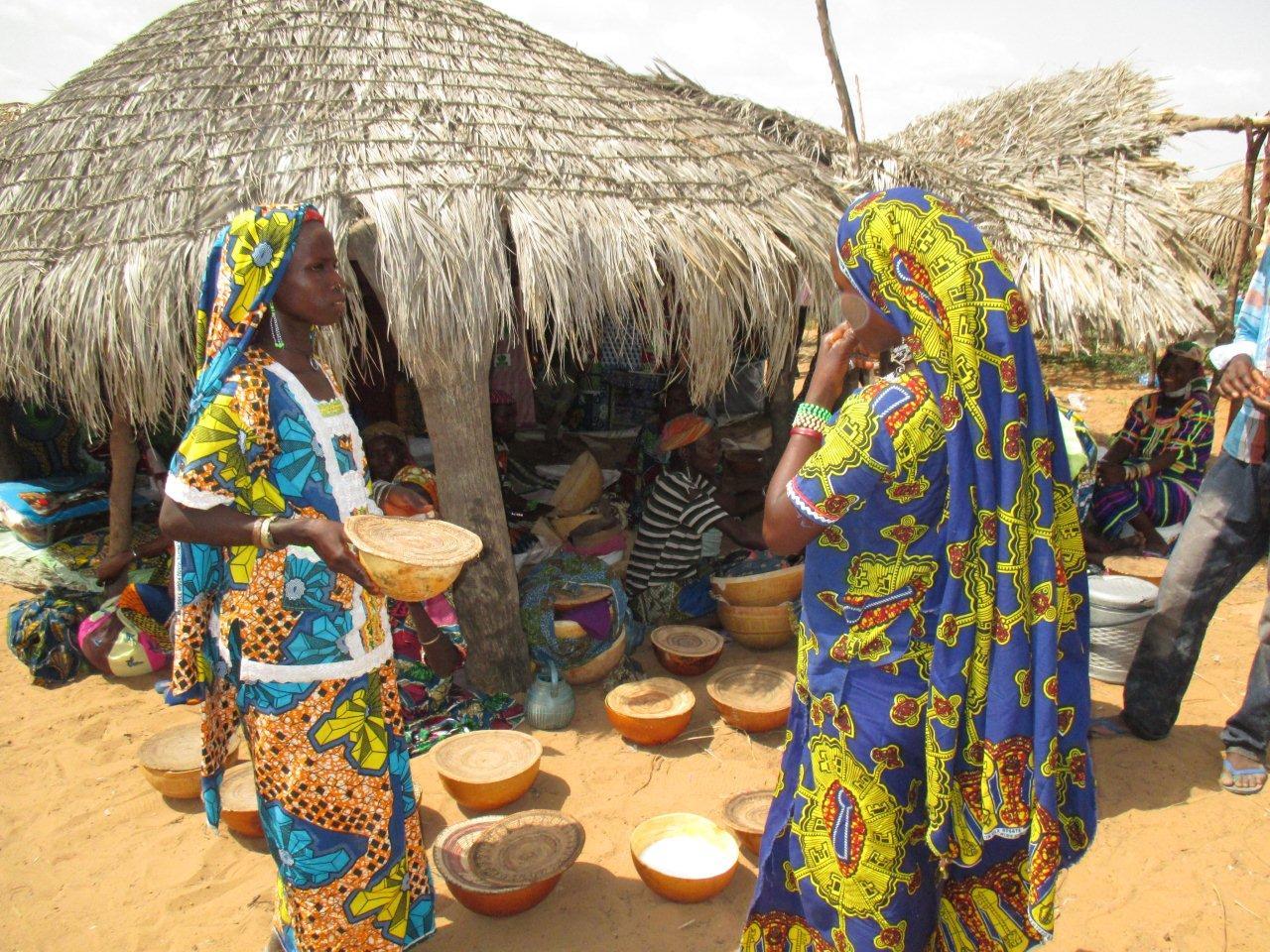 Célébration de la journée internationale de la femme rurale : la FONGS mise sur la facilitation de l'accès au crédit