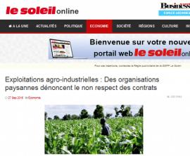 Sénégal : restitution d'une étude sur la cohabitation entre exploitations familiales et agro-industrielles autour du Lac de Guiers et dans les Niayes