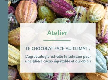L'adaptation de la cacao-culture ivoirienne au dérèglement climatique : L'agroécologie pourrait-elle être une solution ?