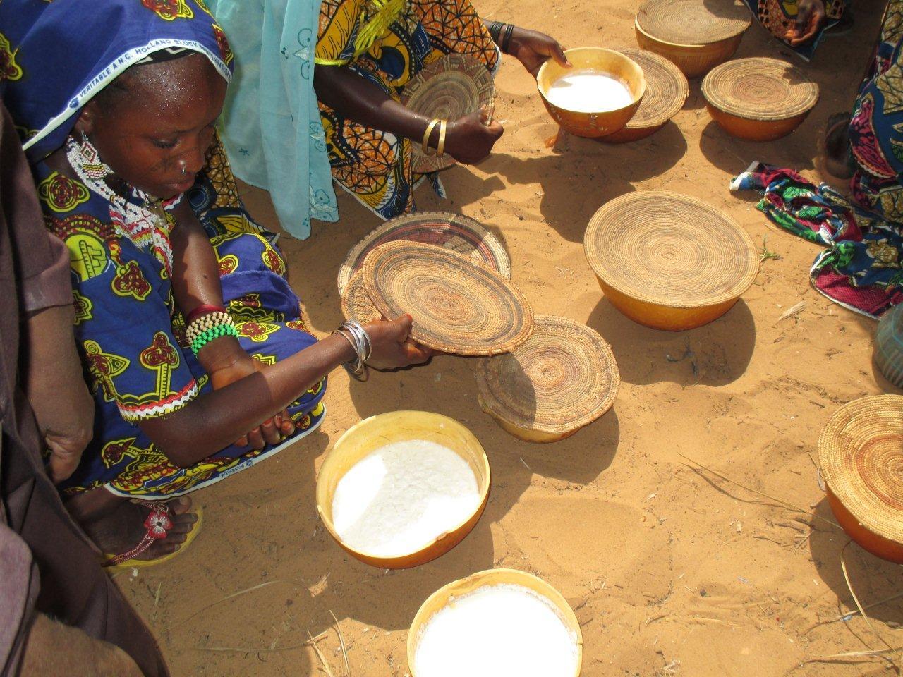 Le développement de la filière lait en Afrique de l'Ouest au centre des préoccupations