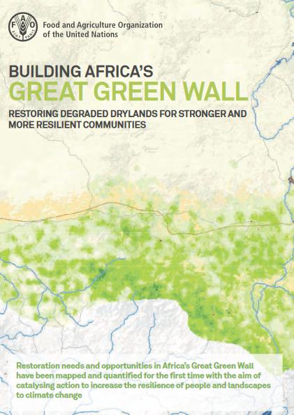 10 millions d'hectares par an à restaurer le long de la Grande Muraille Verte d'Afrique