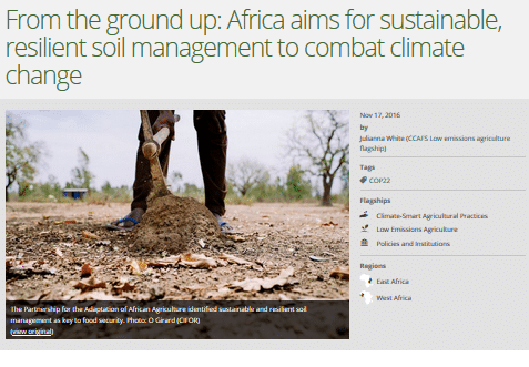 From the ground up: Africa aims for sustainable, resilient soil management to combat climate change