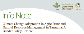 The state of gender responsiveness in Tanzania's climate change policies