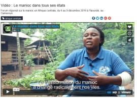 Vidéo : Le manioc dans tous ses états
