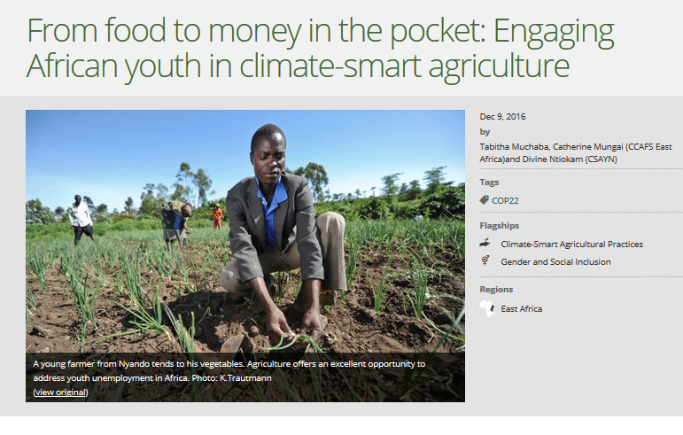 From food to money in the pocket: Engaging African youth in climate-smart agriculture