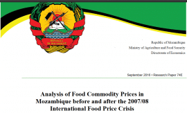 Analysis of Food Commodity Prices in  Mozambique before and after the 2007/08  International Food Price Crisis