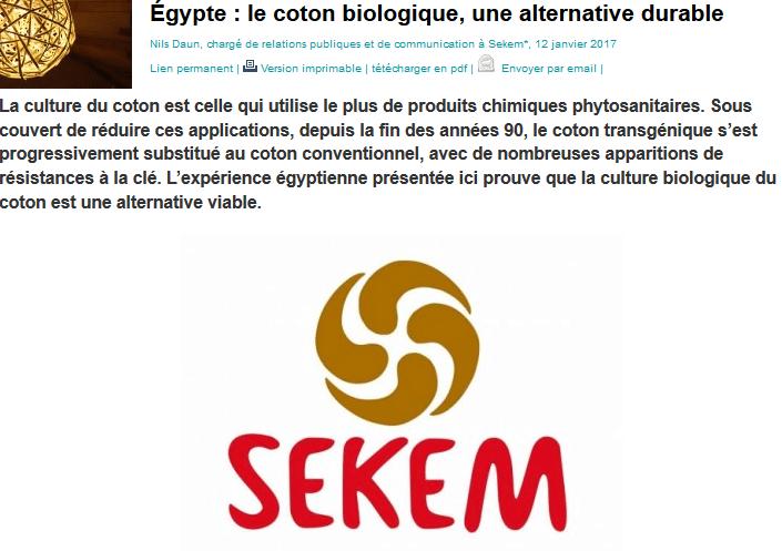 Egypte: le coton biologique, une alternative durable