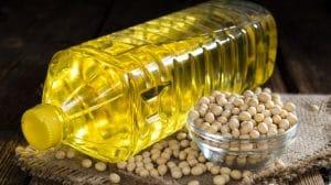 Fiche technique : Comment extraire l'huile de soja à la maison ?