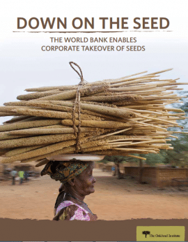 Report: Down of the seed: World Bank enables corporates takeover of seed